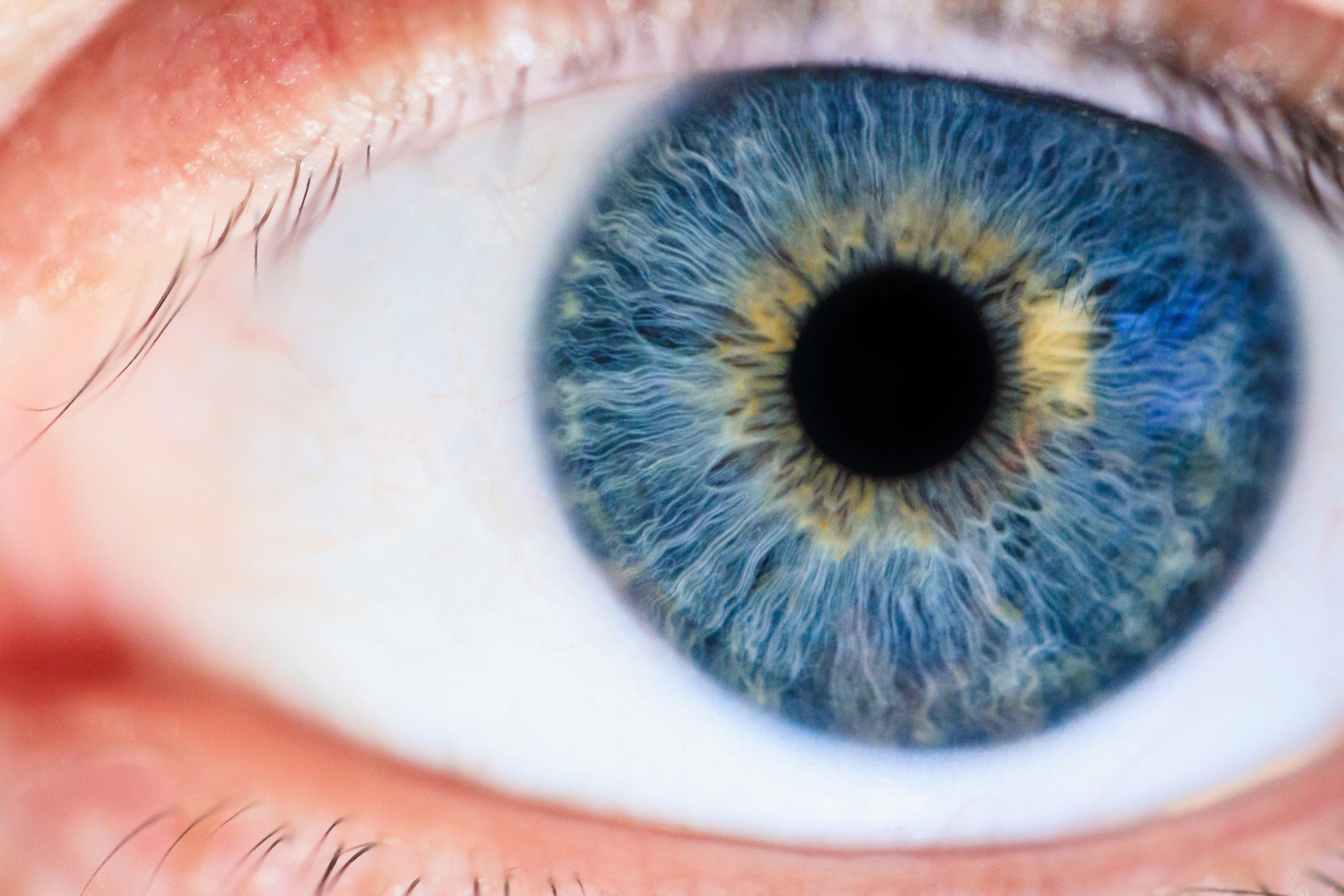 macro-photo-of-eye-1486641